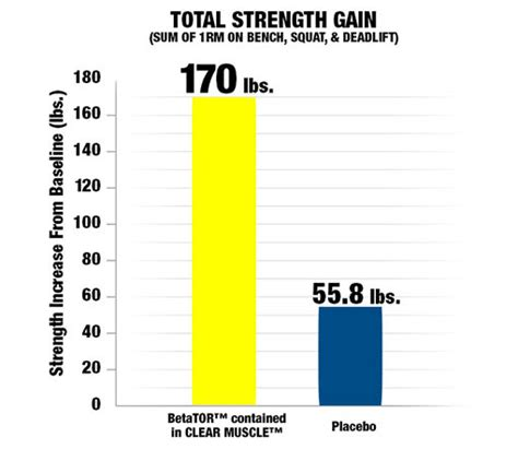 creatine 1 rep max clear muscletech tech at gigas