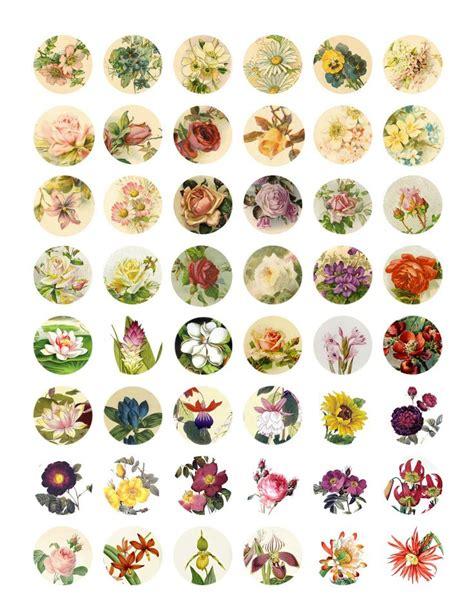bottle cap images 25 best ideas about free bottlecap images on