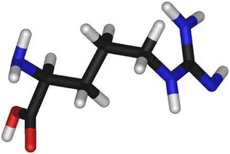 ossido nitrico negli alimenti cos 232 l arginina