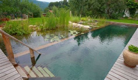Concrete Block Homes Plans by Natural Pools Or Swimming Ponds Nifty Homestead