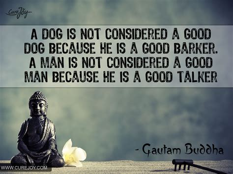 when is a not considered a puppy 42 quotes from buddha that will change your page 3 of 5