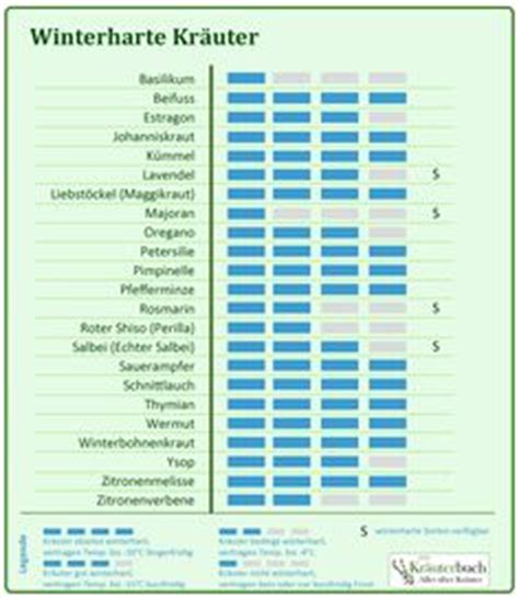 Garten Winterfest Machen Lavendel by 220 Ber 1 000 Ideen Zu Winterharte Balkonpflanzen Auf