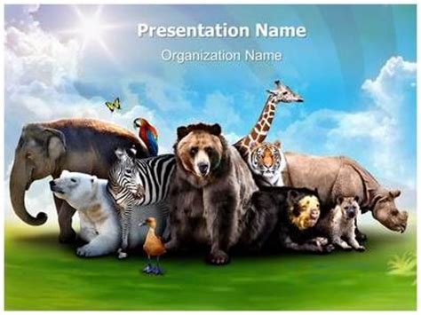 animal powerpoint template roncade info