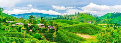 best tours in sri lanka 39 best sri lanka tours packages 2018 2019