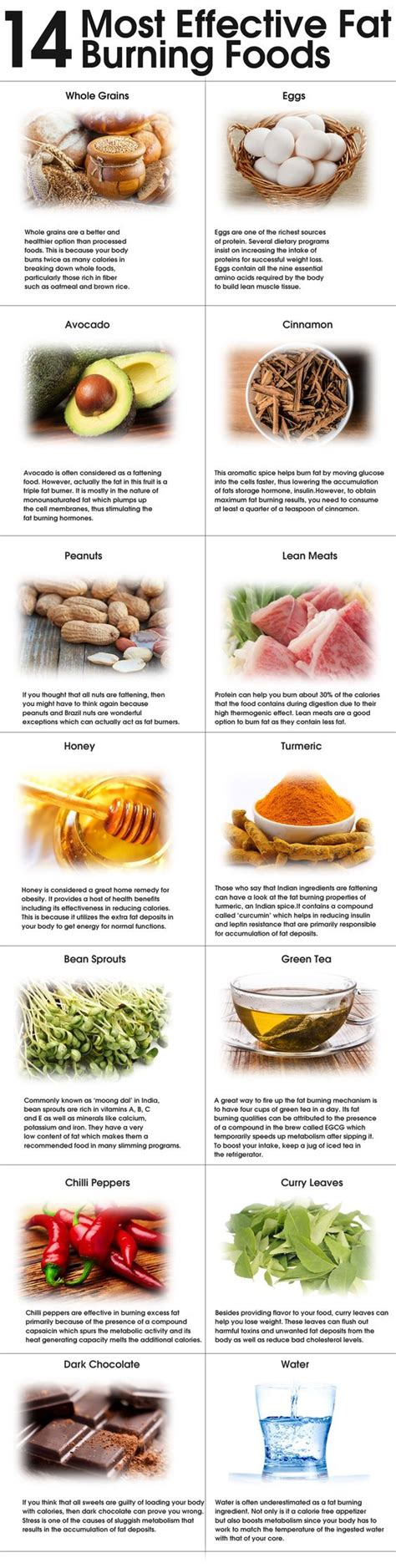 3 foods that contain healthy fats health discount codes and burning foods on