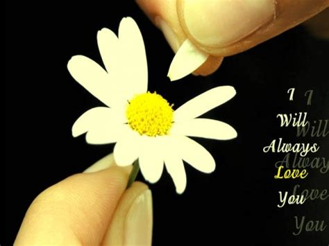 wallpapers emotional love quotes images
