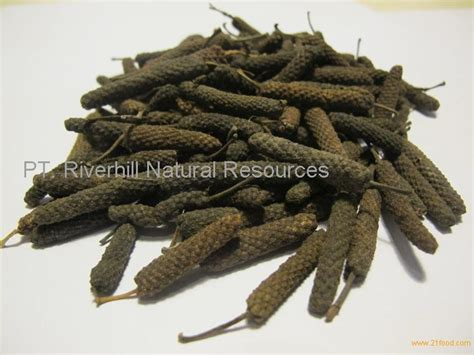 Cabe Jamu Cabe Jawa Pepper Cabe Puyang Asalan Murah pepper from indonesia products indonesia pepper from indonesia supplier