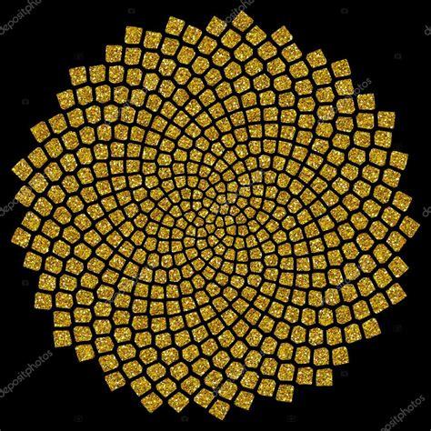 golden section in nature sunflower seeds golden ratio golden spiral fibonacci