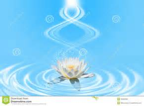 Lotus Of Light Pink Lotus With Spiral Light Royalty Free Stock Images