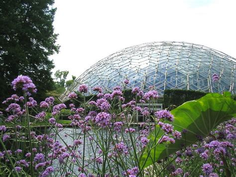 17 Best Images About It S A St Louis Thing On Pinterest St Louis Botanical Gardens Lights
