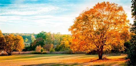 imagenes de paisajes bonitas image gallery hermosos paisajes de otono