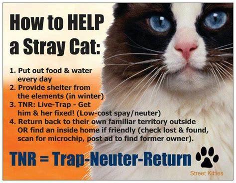 Trap Neuter Return trap neuter return info feral cat awareness project