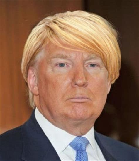 donald trumps hairstyle beautiful hairstyles david m law the way i see it
