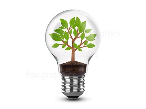 tree in light bulb png fox graphics
