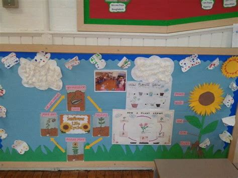 ideas for ks2 science club science and investigation plant cycle life cycle water