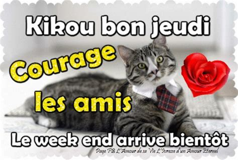 kikou bon jeudi courage les amis le week  arrive