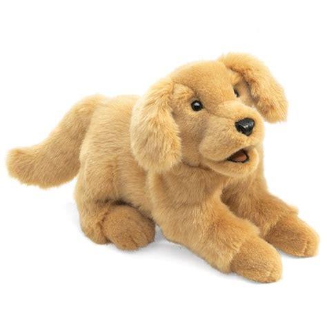 golden retriever puppy stages golden retriever puppy folkmanis