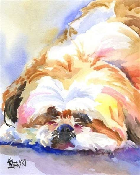 shih tzu original breed shih tzu print of original watercolor painting 11x14
