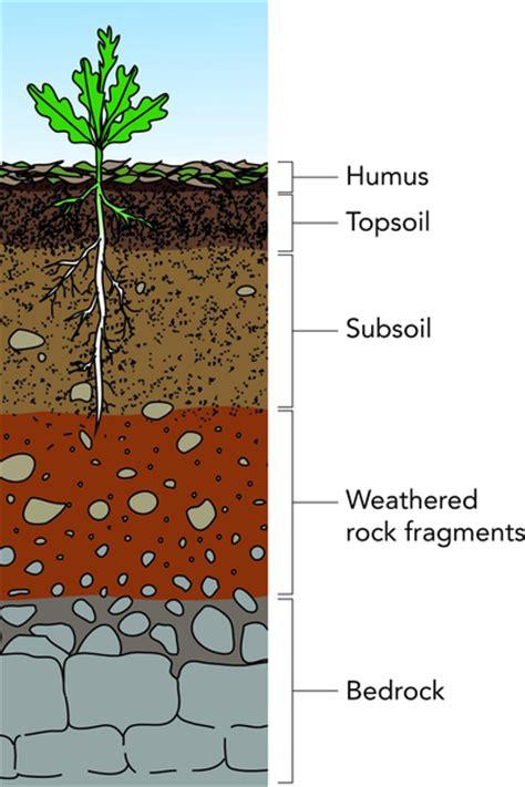 layers of the soil diagram science 4 186 ceip alto ebro soil