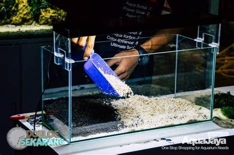 cara membuat filter aquascape murah cara membuat aquascape step by step aquajaya