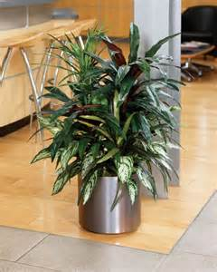 Artificial Plant Decoration Home Decorating With Artificial Plants Room Decorating Ideas