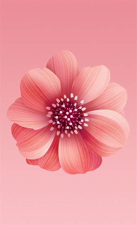 xiaomi mi  official wallpapers  android updated