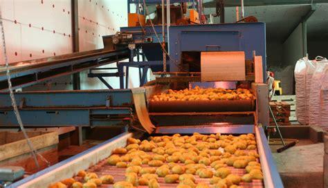 die rv bank warenwirtschaft der rv bank kartoffelsortieranlage l 228 uft