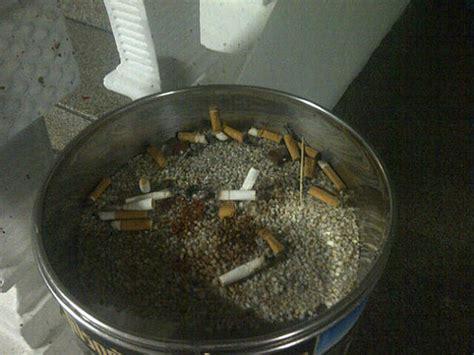 fiori di bach per smettere di fumare smettere di fumare con i fiori di bach mondobenessereblog
