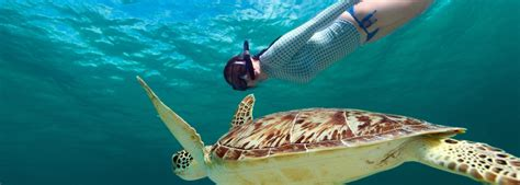 10 best snorkeling spots in the world 10 best snorkeling spots in the world smartertravel