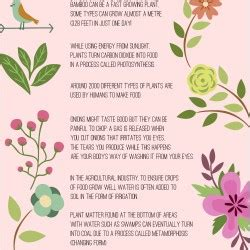 facts about flowers 10 amazing facts you should about plants and flowers