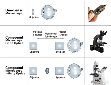 infinity optical infinity optical systems southern microscopes