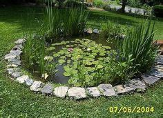 How To Catch A Frog In Your Backyard by 1000 Images About Fish Pond On Koi Fish Pond