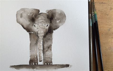 how to watercolor a baby elephant barbara luel