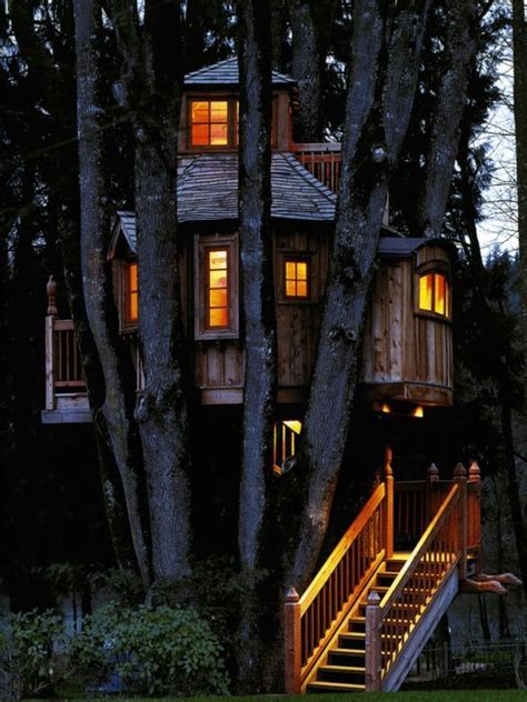 seattle treehouse point featured in animal planets treehouse masters explores creations around country