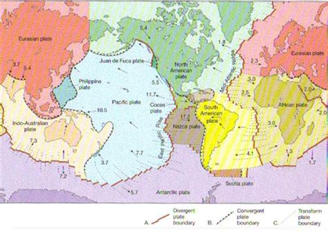 Us Fissidens Moss Di Batu Dan Lempeng tektonisme anndy djoewari