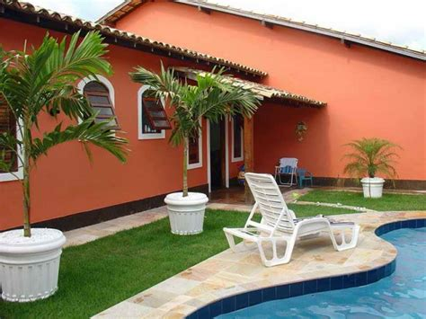 backyard palm trees gardening landscaping palm trees ideas for backyard with orange wall palm trees