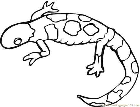 monitor lizard coloring pages related keywords suggestions for monitor lizard coloring