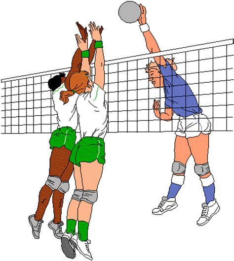 anime voli voleibol im 225 genes
