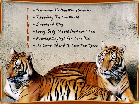 Essay About Save The Earth Caign by Save Tigers Slogans