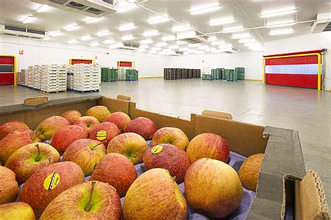 cold storage new year oranges commercial industrial photographers in kent