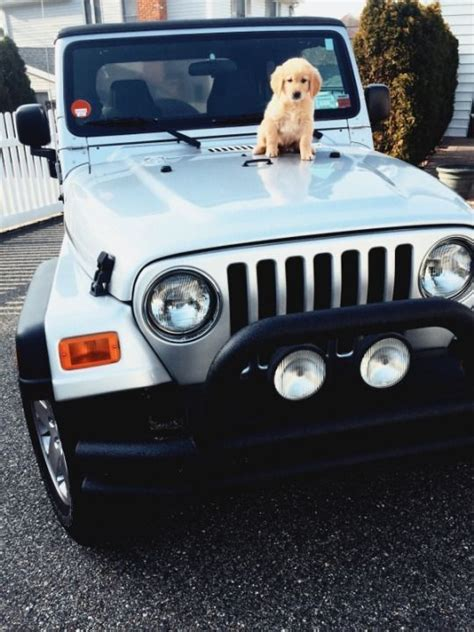 girly black jeep 55939 best images about my favorite car on pinterest