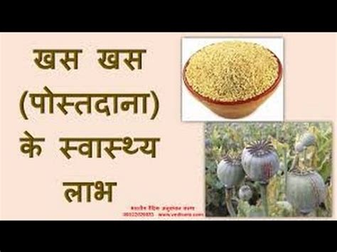 Poppy Seeds Khuskhus For And Health And Personality Grooming by र ज न ख ए 1 र पए क खसखस और फ र द ख चमत क र Doovi