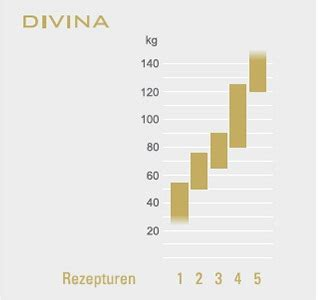 schramm matratze divina schramm matratze divina 80 betten klobeck
