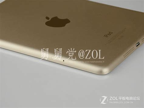 Mini 3 Gold purported images of gold mini 2 with touch id leak