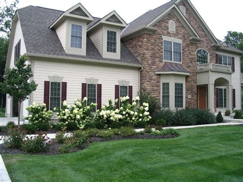 front yard landscaping with hydrangeas lime light hydrangea perennial garden lilac front yard