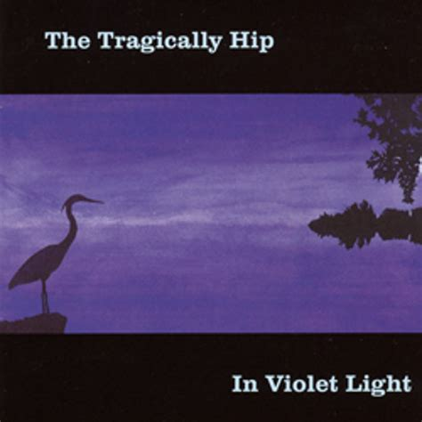 The Light The Album Leaf by In Violet Light The Tragically Hip By The Tragically Hip
