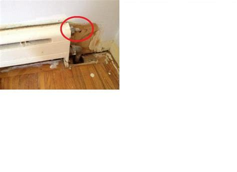 baseboard heater not working one section of baseboard heating not working