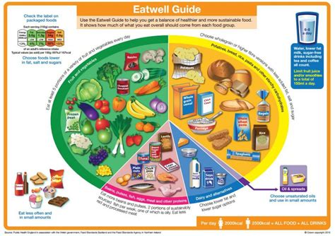 Nutritional Recommendations For Individuals With Diabetes Alison Gray Rd Mba by Eatwell Guide Is Updated The Diabetes Times
