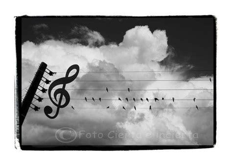 imagenes surrealistas musica m 225 s de 1000 ideas sobre pentagrama con notas musicales en