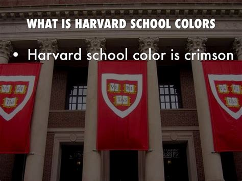 harvard school colors harvard by isaac wagner